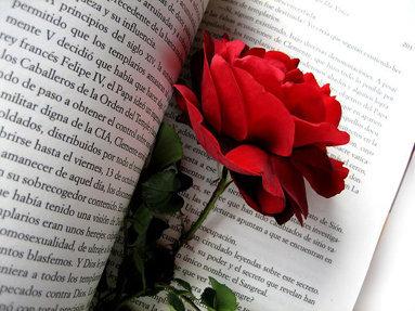 Manuel Almendro Firmando En El Día Del Libro, Sant Jordi